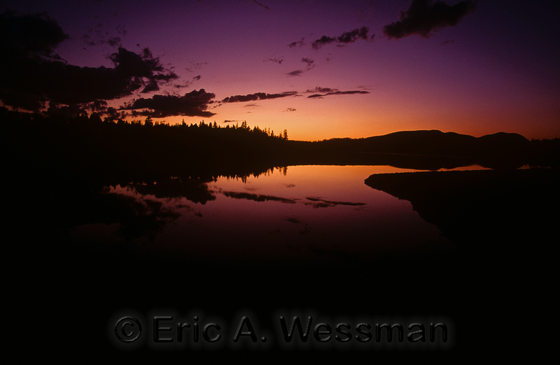 Sunset Silhouette reflection of trees in water, Acadia National Park, Maine.