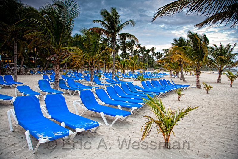 Palm trees and blue beach chairs on sandy beach. Costa Caribe Resort, Dominican Republic.