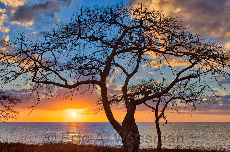 La Boca Sunset