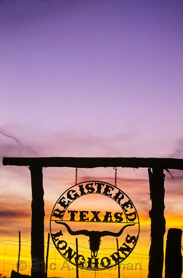Longhorns Sign 1