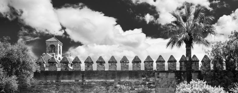 Castle Wall B&W