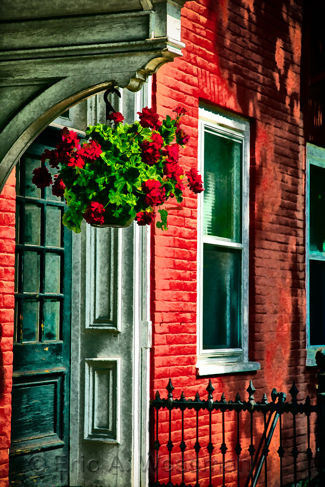Red Geraniums, Red House
